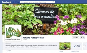 Facebook AOC